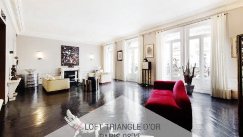 Le Loft Triangle d'Or